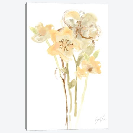 Apricot Dusk I Canvas Print #JEV466} by June Erica Vess Art Print