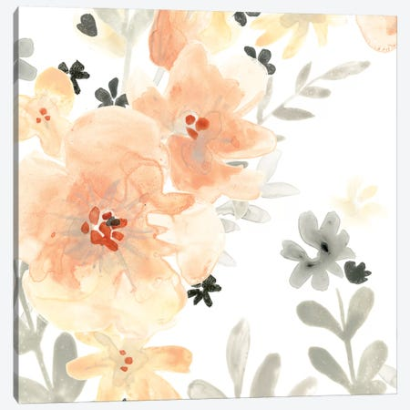 Blush Garden I Canvas Print #JEV481} by June Erica Vess Canvas Wall Art