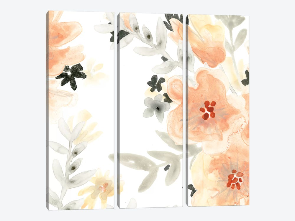 Blush Garden II by June Erica Vess 3-piece Canvas Art Print