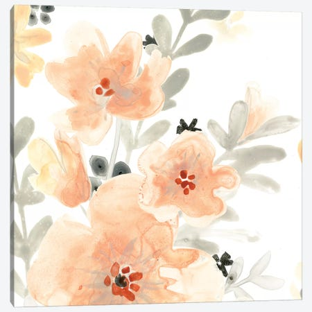 Blush Garden III Canvas Print #JEV483} by June Erica Vess Canvas Wall Art