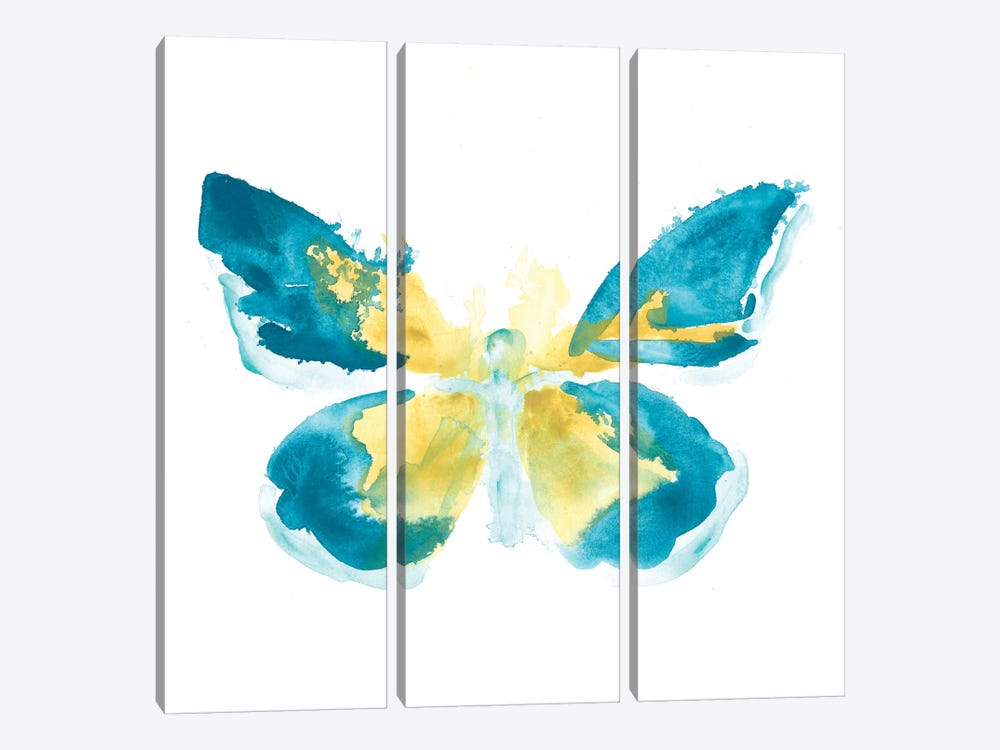 Butterfly Traces I by June Erica Vess 3-piece Canvas Print