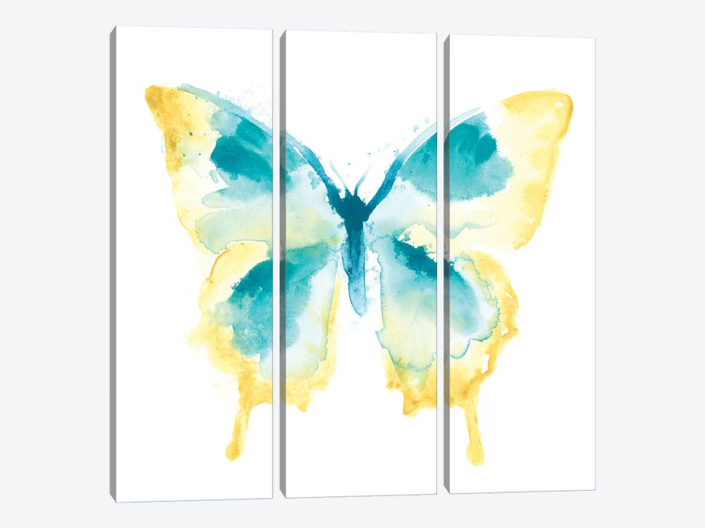 Butterfly Traces II by June Erica Vess 3-piece Canvas Artwork