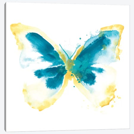 Butterfly Traces III Canvas Print #JEV490} by June Erica Vess Art Print
