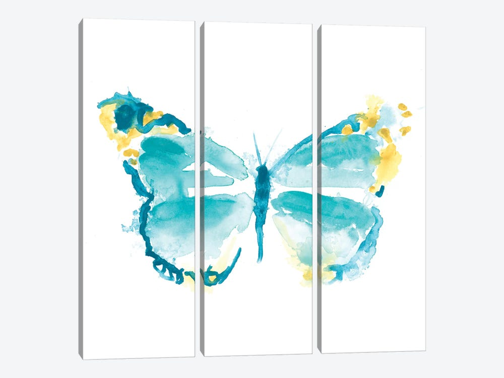 Butterfly Traces IV by June Erica Vess 3-piece Canvas Print