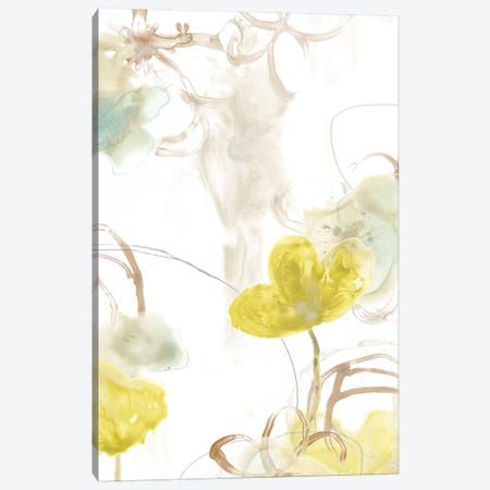 Floral Arc I Canvas Print #JEV531} by June Erica Vess Canvas Art
