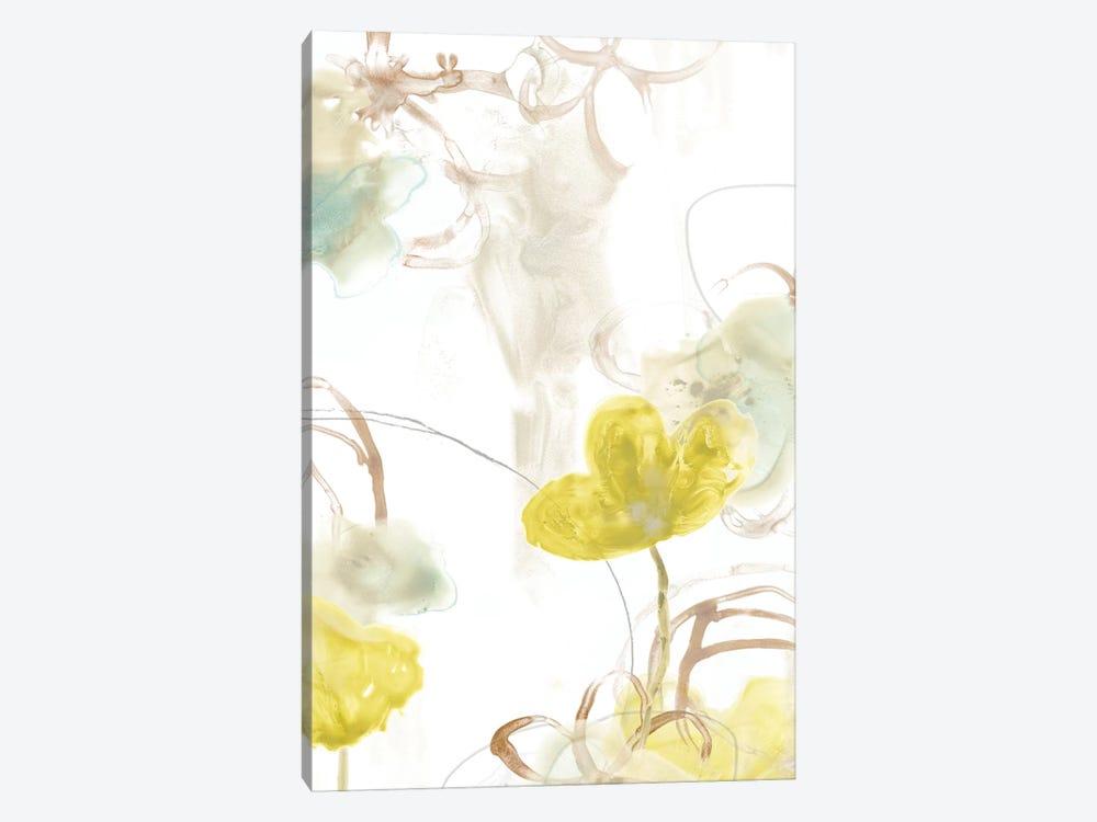 Floral Arc I by June Erica Vess 1-piece Canvas Artwork