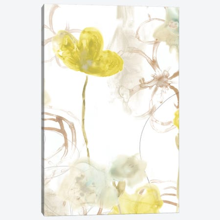 Floral Arc II Canvas Print #JEV532} by June Erica Vess Canvas Art