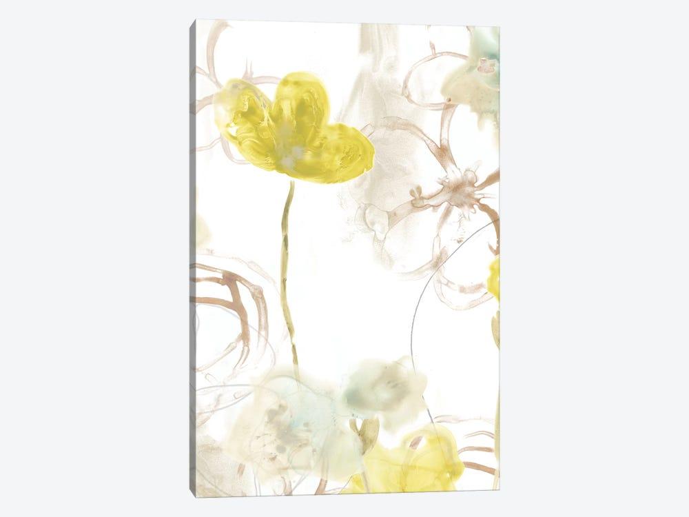 Floral Arc II by June Erica Vess 1-piece Canvas Art Print