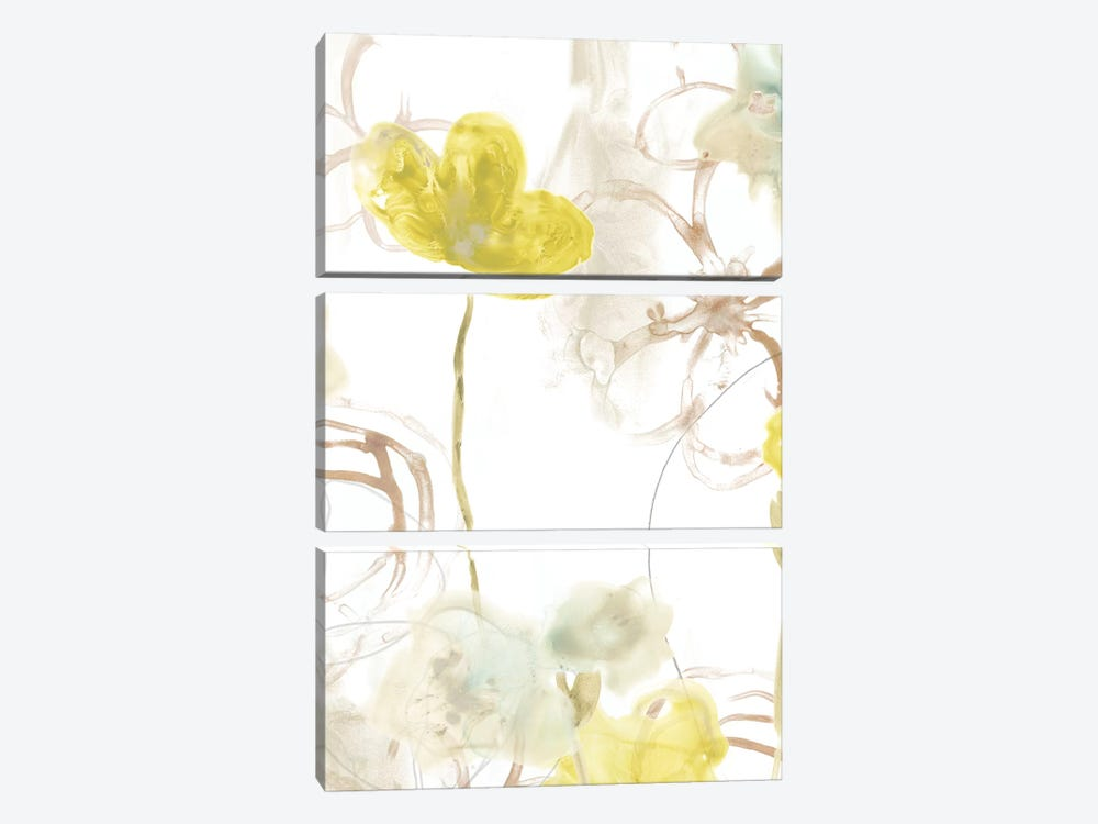 Floral Arc II by June Erica Vess 3-piece Canvas Art Print