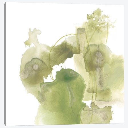 Foliose Gesture I Canvas Print #JEV535} by June Erica Vess Art Print