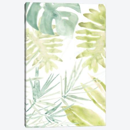 Island Medley I Canvas Print #JEV565} by June Erica Vess Canvas Art
