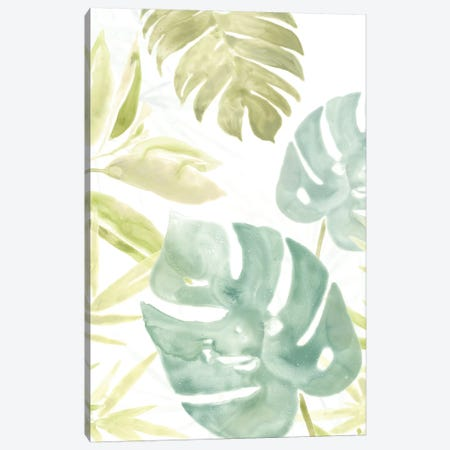 Island Medley III Canvas Print #JEV567} by June Erica Vess Canvas Wall Art