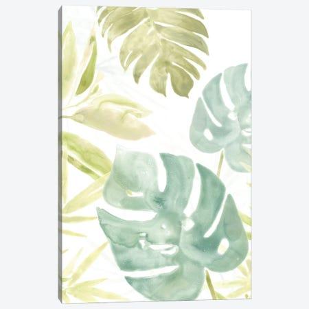 Island Medley III Canvas Print #JEV567} by June Erica Vess Canvas Wall Art