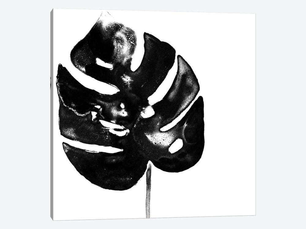 Monochrome Tropic I by June Erica Vess 1-piece Canvas Art Print