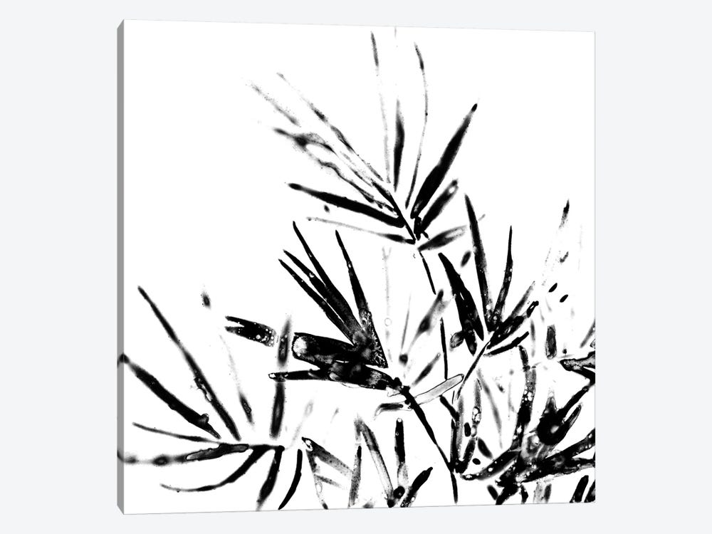Monochrome Tropic II by June Erica Vess 1-piece Canvas Artwork
