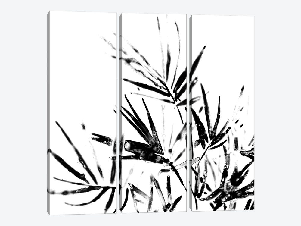 Monochrome Tropic II by June Erica Vess 3-piece Canvas Artwork