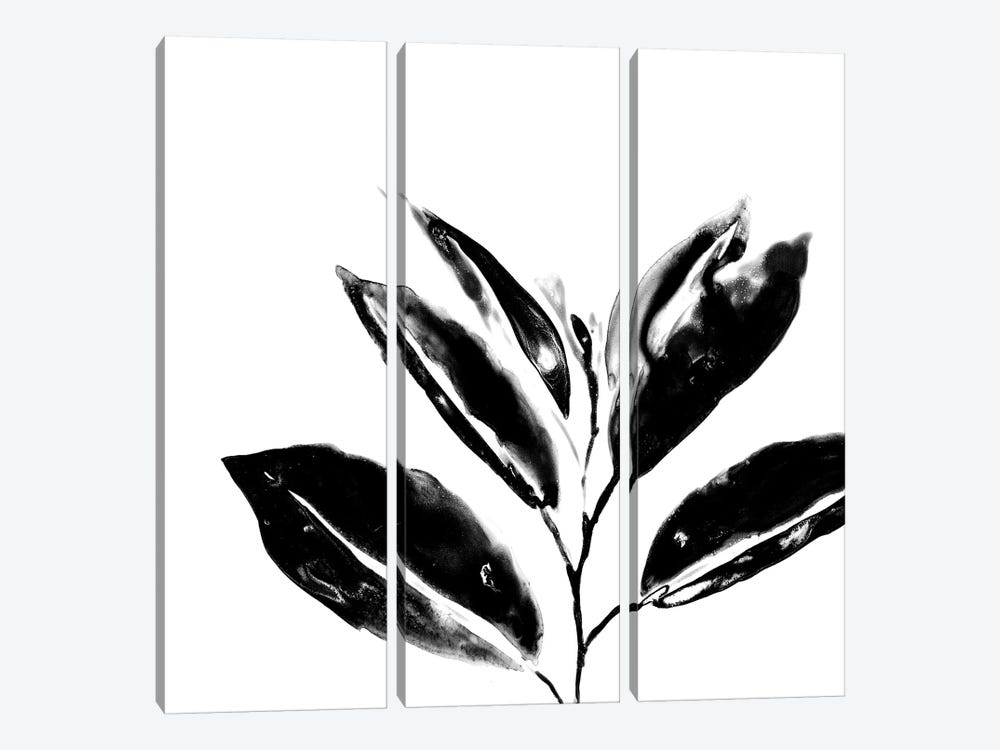 Monochrome Tropic IV 3-piece Canvas Art