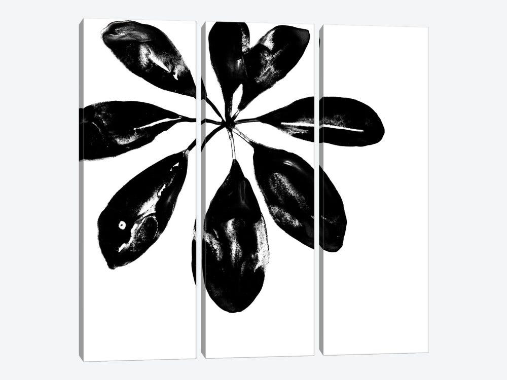 Monochrome Tropic VI by June Erica Vess 3-piece Canvas Art Print
