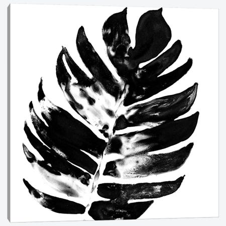 Monochrome Tropic VII Canvas Print #JEV597} by June Erica Vess Art Print