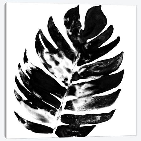 Monochrome Tropic VII Canvas Print #JEV597} by June Erica Vess Art Print