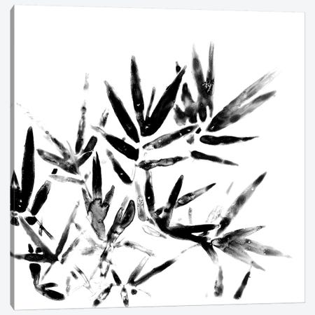 Monochrome Tropic VIII Canvas Print #JEV598} by June Erica Vess Canvas Art
