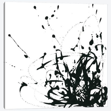 Onyx Expression II Canvas Print #JEV600} by June Erica Vess Canvas Art