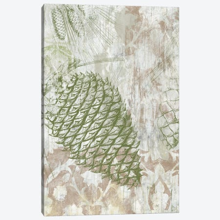 Pinecone Fresco I Canvas Print #JEV611} by June Erica Vess Canvas Print