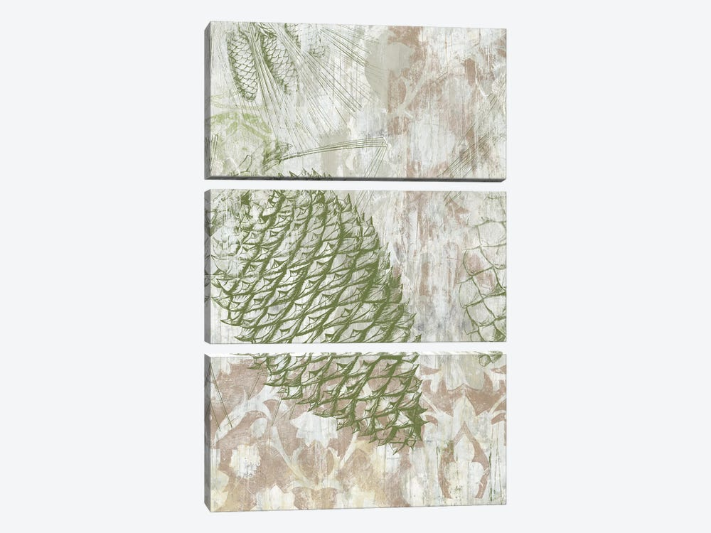 Pinecone Fresco I by June Erica Vess 3-piece Canvas Wall Art