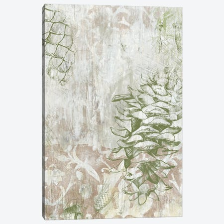 Pinecone Fresco II Canvas Print #JEV612} by June Erica Vess Canvas Print