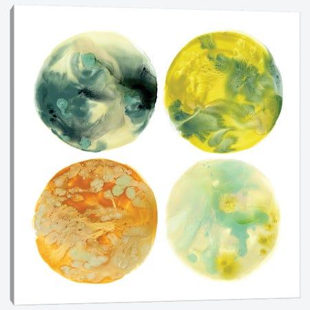 Planetary VI Canvas Print #JEV618} by June Erica Vess Canvas Print