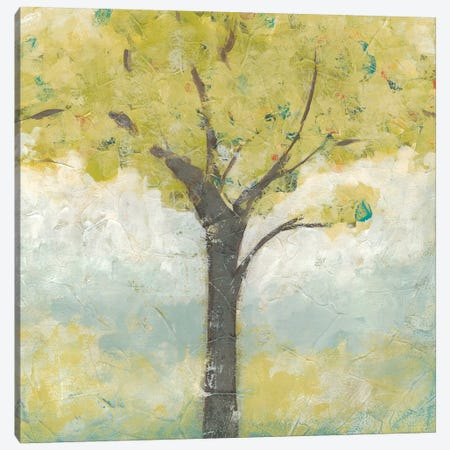 Spring Arbor I Canvas Print #JEV645} by June Erica Vess Canvas Art Print
