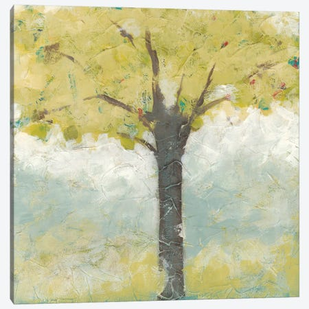 Spring Arbor II Canvas Print #JEV646} by June Erica Vess Art Print
