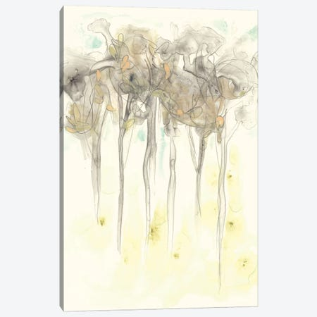 Sylvan Sketch I Canvas Print #JEV649} by June Erica Vess Canvas Wall Art