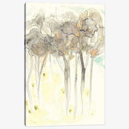 Sylvan Sketch II Canvas Print #JEV650} by June Erica Vess Canvas Print