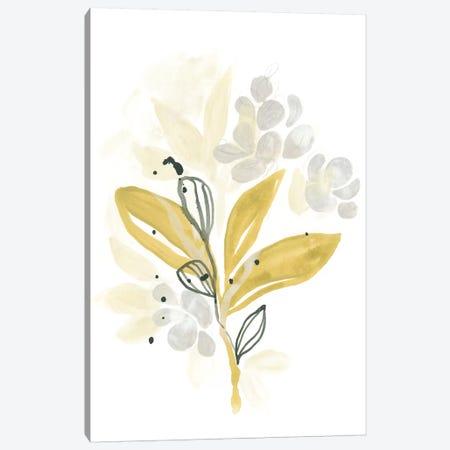 The Minimalist Garden II Canvas Print #JEV652} by June Erica Vess Canvas Print