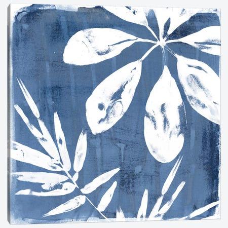 Tropical Indigo Impressions II Canvas Print #JEV664} by June Erica Vess Canvas Print