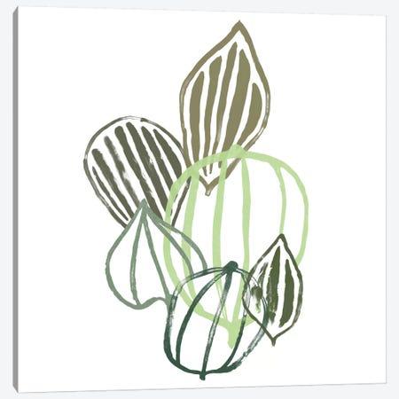 Botanical Interim I Canvas Print #JEV709} by June Erica Vess Art Print