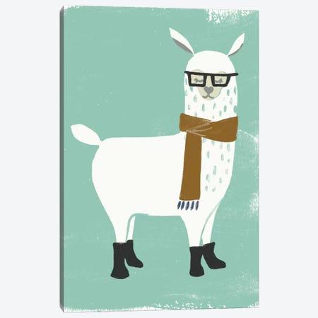 Bundle Up Llama I Canvas Print #JEV713} by June Erica Vess Canvas Art