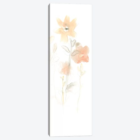 Corsage II Canvas Print #JEV734} by June Erica Vess Canvas Art Print