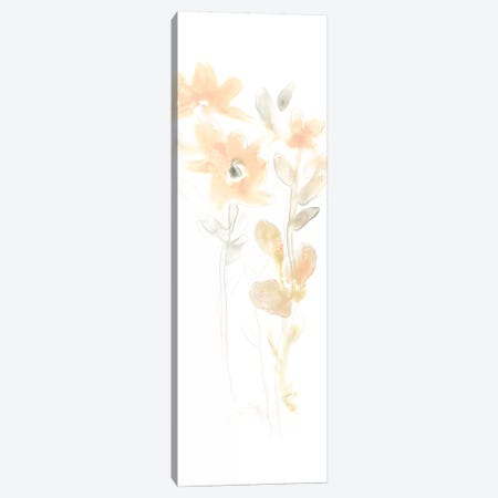 Corsage III Canvas Print #JEV735} by June Erica Vess Canvas Print