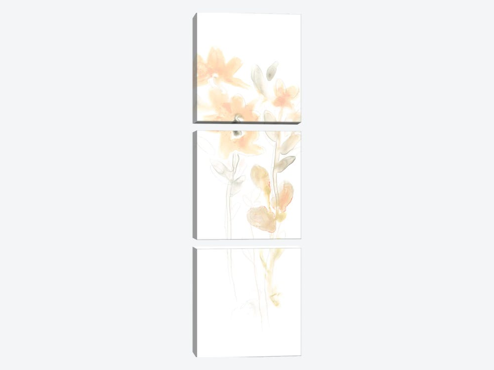 Corsage III by June Erica Vess 3-piece Canvas Art Print