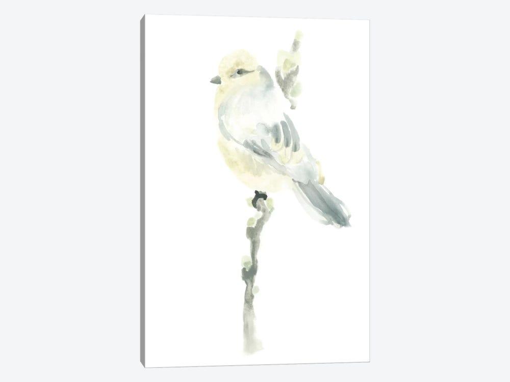 Avian Impressions I by June Erica Vess 1-piece Canvas Art