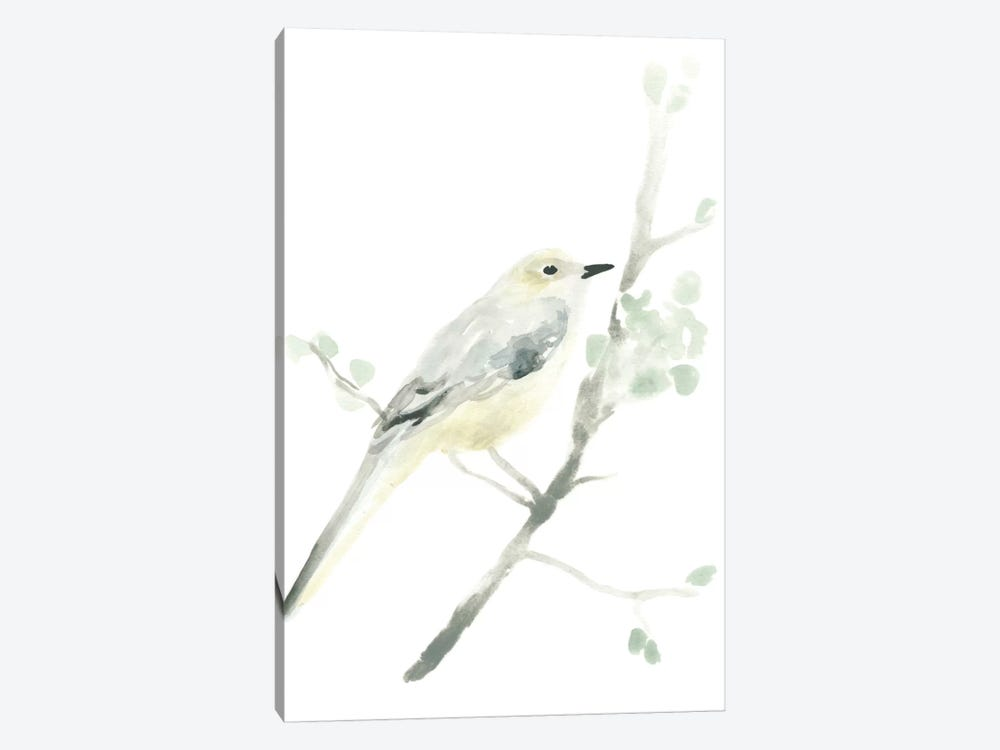 Avian Impressions II by June Erica Vess 1-piece Canvas Art Print