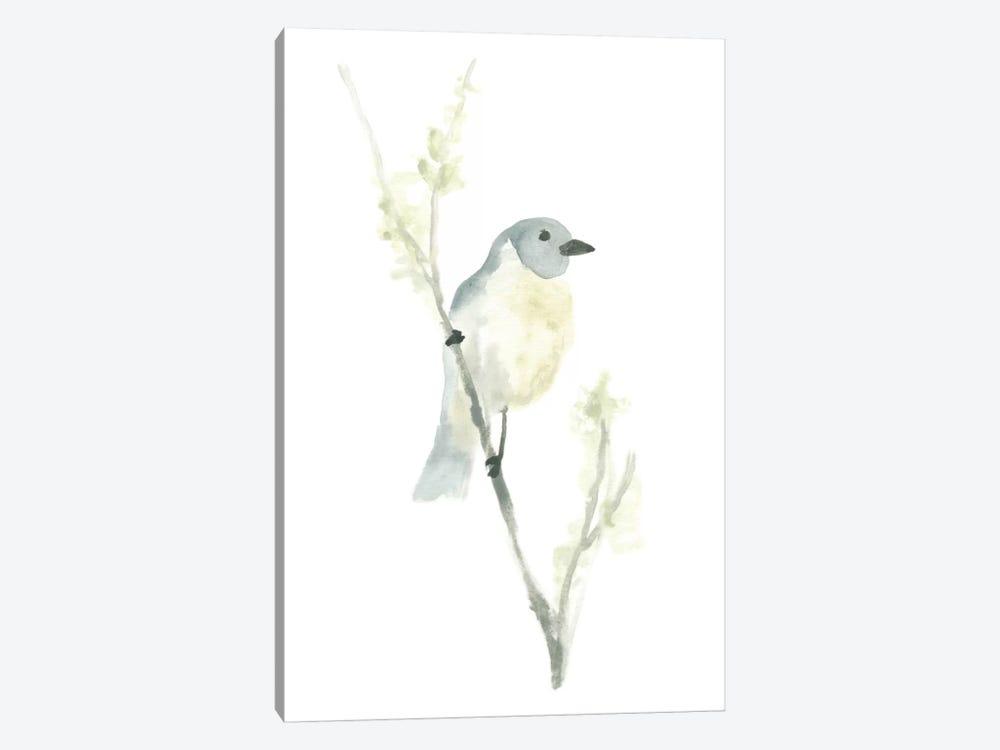 Avian Impressions III by June Erica Vess 1-piece Canvas Wall Art