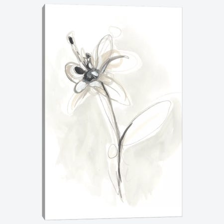 Neutral Floral Gesture IX Canvas Print #JEV782} by June Erica Vess Art Print