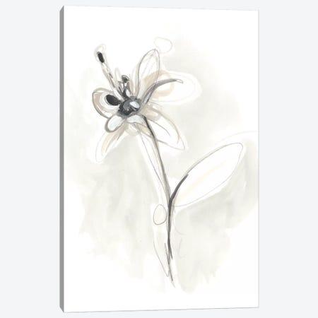 Neutral Floral Gesture IX Canvas Print #JEV782} by June Erica Vess Art Print