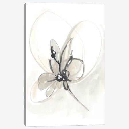 Neutral Floral Gesture VI Canvas Print #JEV784} by June Erica Vess Canvas Art