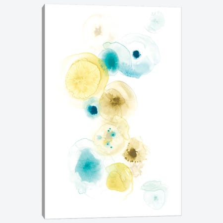 Petri I Canvas Print #JEV793} by June Erica Vess Canvas Wall Art