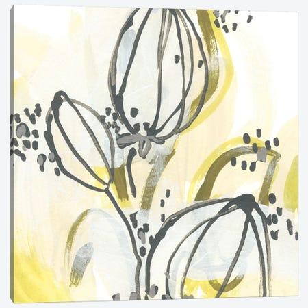 Podular I Canvas Print #JEV799} by June Erica Vess Canvas Art
