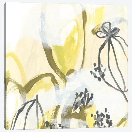 Podular II Canvas Print #JEV800} by June Erica Vess Canvas Artwork